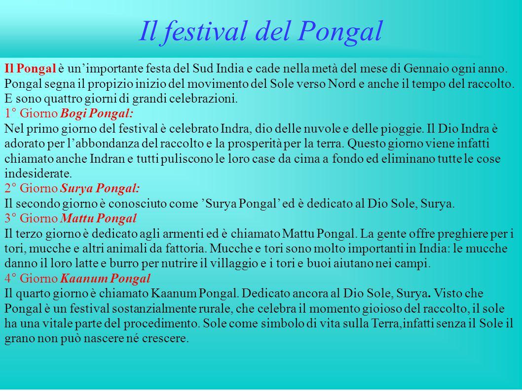Il festival del Pongal Il Pongal è un'importante festa del Sud India e cade nella metà del mese di Gennaio ogni anno. Pongal segna il propizio inizio