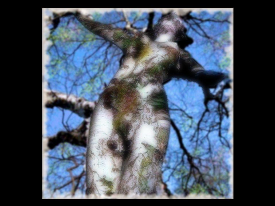 Su cuccuru 'e su monte tottu ammantadu 'e nues bio a s'albeschidolza Allargu in s'orizonte bio albeghes e boes paschinne in sa cussolza. La vetta del