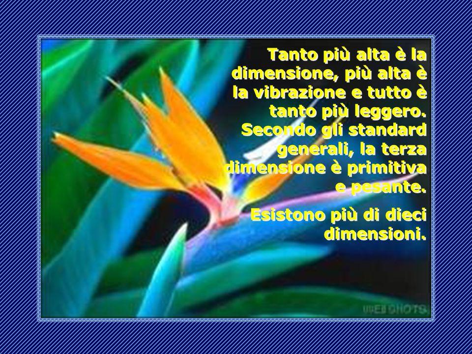Heaven, il nostro paradiso è nella quarta dimensione, vicino alla Terra, che ora è ancora nella terza dimensione.