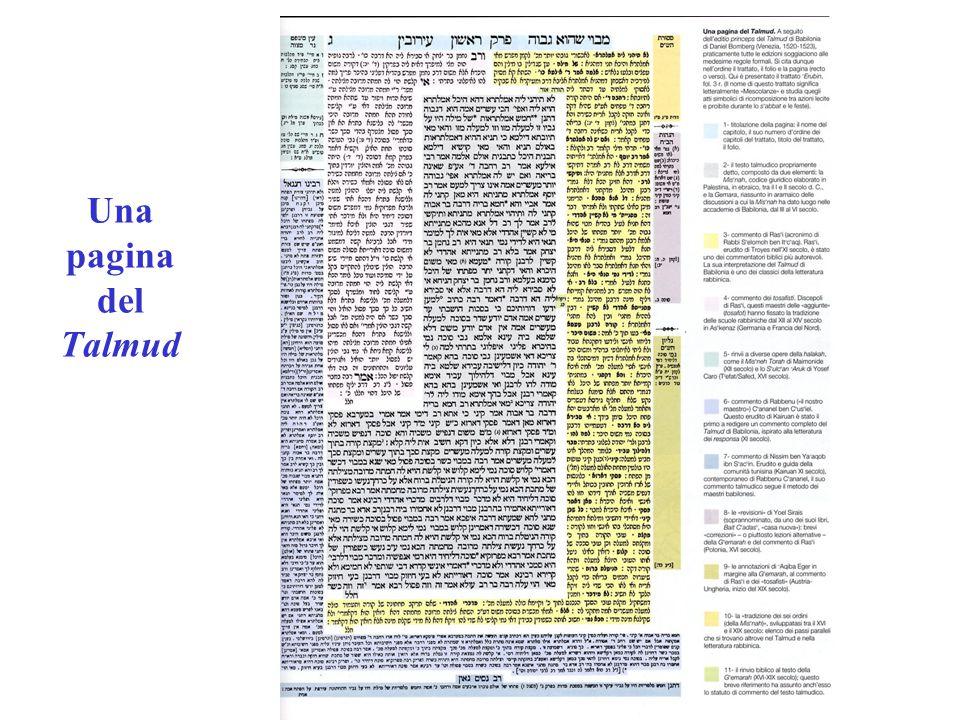 Per trasmettere la Torah e la sua realizzazione nella vita faremo e ascolteremo… (Es 24,7-8) prassi codificata 613 precetti Magistero.