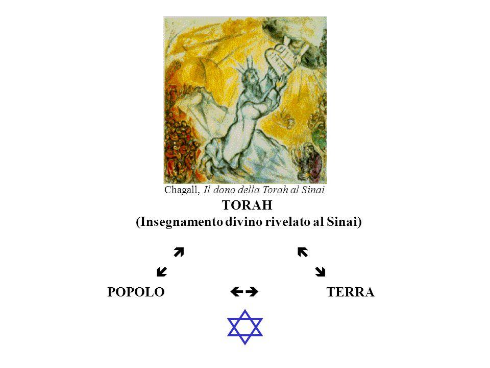 TORAH POPOLO TERRA