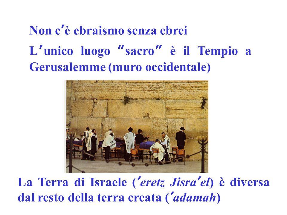 La Sinagoga è un luogo di riunione per ritrovarsi per studiare per pregare per festeggiare Custodisce il rotolo sacro della Torah ma non è il Tempio