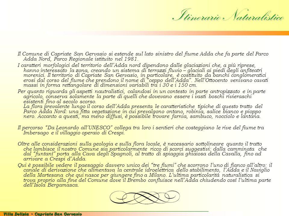 Villa Delizia ~ Capriate San Gervasio Riepilogo dati tecnici Superficie dell'area: mq.