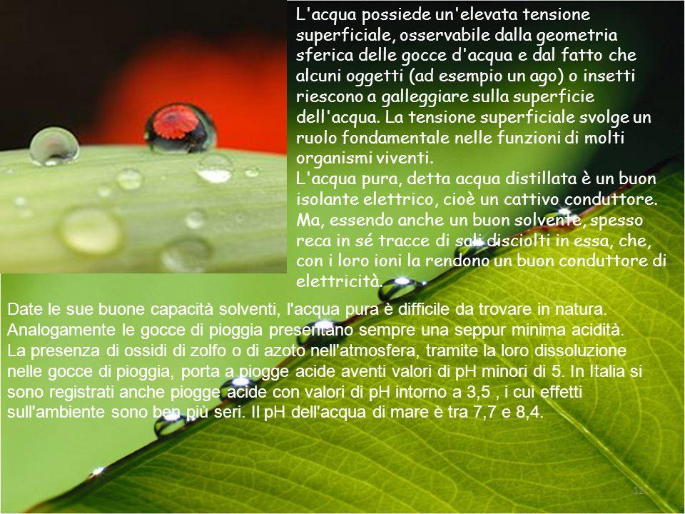 L'acqua possiede un'elevata tensione superficiale, osservabile dalla geometria sferica delle gocce d'acqua e dal fatto che alcuni oggetti (ad esempio