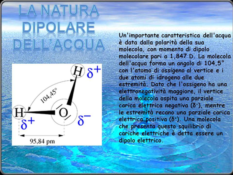Un'importante caratteristica dell'acqua è data dalla polarità della sua molecola, con momento di dipolo molecolare pari a 1,847 D. La molecola dell'ac