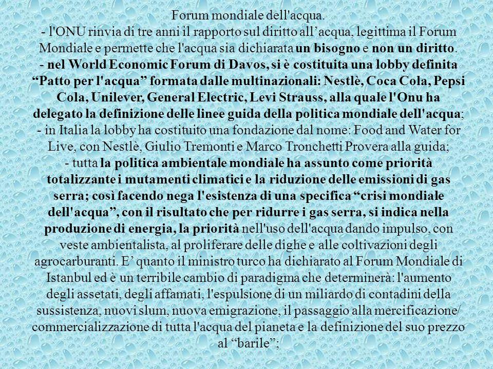Forum mondiale dell'acqua. - l'ONU rinvia di tre anni il rapporto sul diritto all'acqua, legittima il Forum Mondiale e permette che l'acqua sia dichia