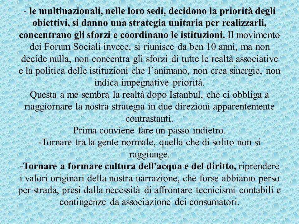 - le multinazionali, nelle loro sedi, decidono la priorità degli obiettivi, si danno una strategia unitaria per realizzarli, concentrano gli sforzi e