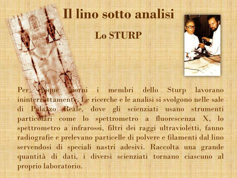 Il lino sotto analisi Lo STURP Per cinque giorni i membri dello Sturp lavorano ininterrottamente. Le ricerche e le analisi si svolgono nelle sale di P