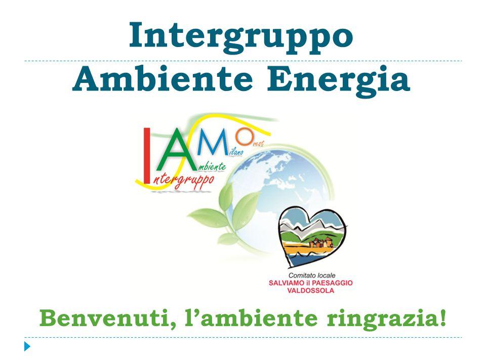 Intergruppo Ambiente Energia Benvenuti, l'ambiente ringrazia!