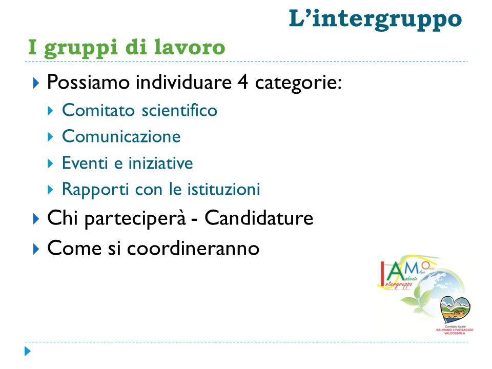  Possiamo individuare 4 categorie:  Comitato scientifico  Comunicazione  Eventi e iniziative  Rapporti con le istituzioni  Chi parteciperà - Candidature  Come si coordineranno L'intergruppo I gruppi di lavoro