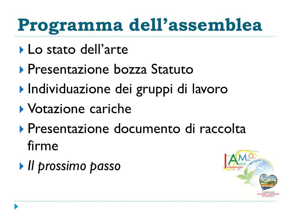 Programma dell'assemblea  Lo stato dell'arte  Presentazione bozza Statuto  Individuazione dei gruppi di lavoro  Votazione cariche  Presentazione documento di raccolta firme  Il prossimo passo