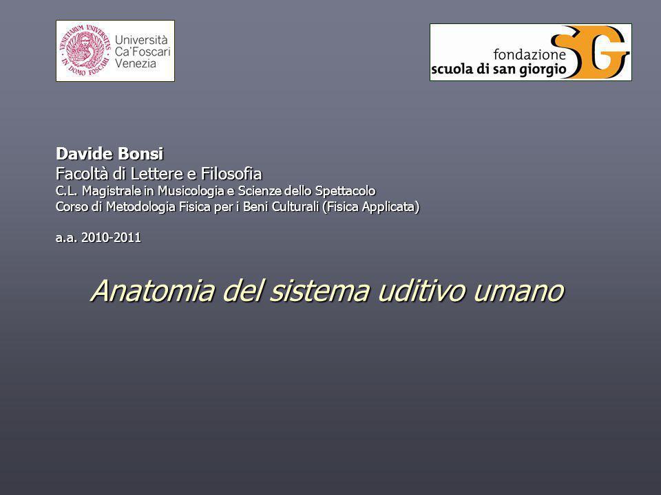 Anatomia del sistema uditivo umano Davide Bonsi Facoltà di Lettere e Filosofia C.L. Magistrale in Musicologia e Scienze dello Spettacolo Corso di Meto