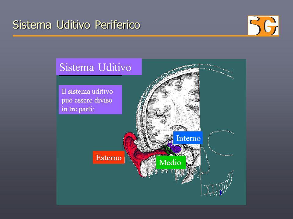 Sistema Uditivo Periferico Sistema Uditivo Il sistema uditivo può essere diviso in tre parti: Esterno Medio Interno