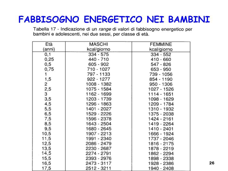 FABBISOGNO ENERGETICO NEI BAMBINI 26 14,5
