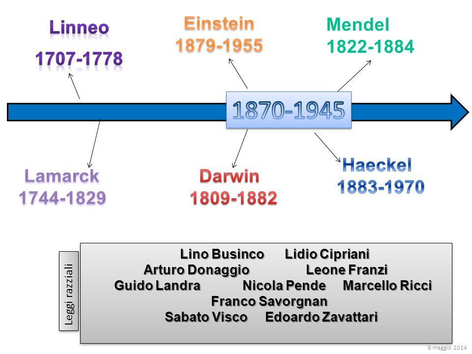 Mendel 1822-1884 Lino Businco Lidio Cipriani Lino Businco Lidio Cipriani Arturo Donaggio Leone Franzi Guido Landra Nicola Pende Marcello Ricci Guido L