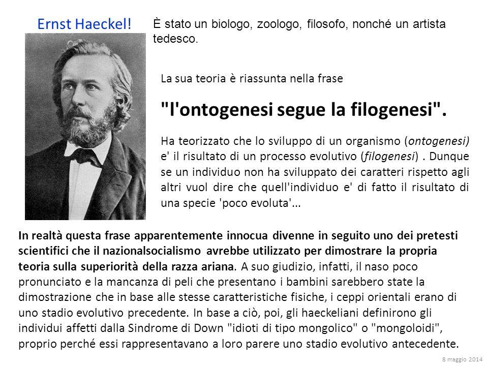 Ernst Haeckel! È stato un biologo, zoologo, filosofo, nonché un artista tedesco. La sua teoria è riassunta nella frase