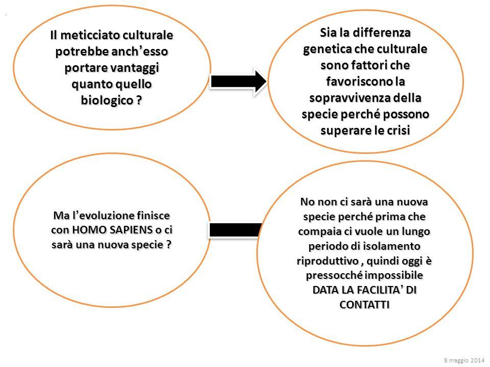 Il meticciato culturale potrebbe anch'esso portare vantaggi quanto quello biologico ? Sia la differenza genetica che culturale sono fattori che favori