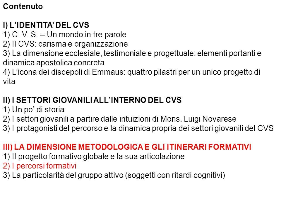 Contenuto I) L'IDENTITA' DEL CVS 1) C. V. S.
