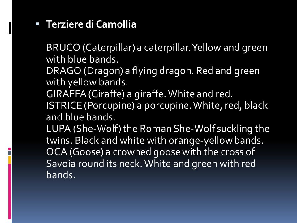  Terziere di Camollia BRUCO (Caterpillar) a caterpillar. Yellow and green with blue bands. DRAGO (Dragon) a flying dragon. Red and green with yellow