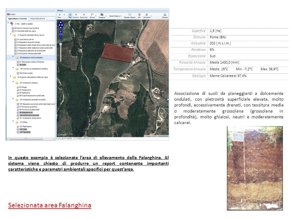 In questo esempio è selezionata l'area di allevamento della Falanghina.