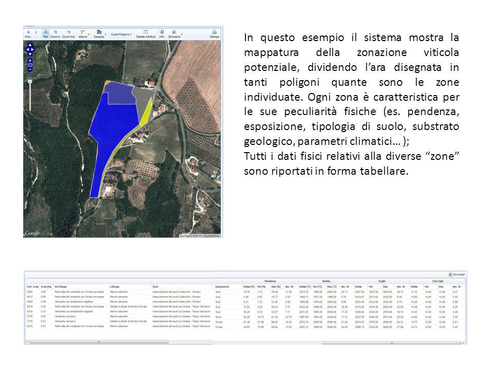 In questo esempio il sistema mostra la mappatura della zonazione viticola potenziale, dividendo l'ara disegnata in tanti poligoni quante sono le zone individuate.