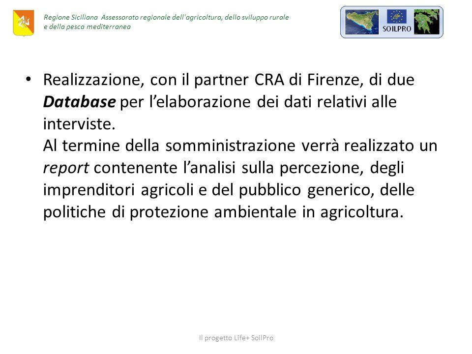 Realizzazione, con il partner CRA di Firenze, di due Database per l'elaborazione dei dati relativi alle interviste.
