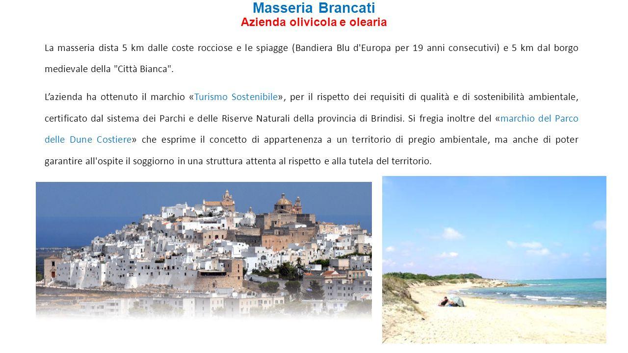 Masseria Brancati Azienda olivicola e olearia La masseria dista 5 km dalle coste rocciose e le spiagge (Bandiera Blu d'Europa per 19 anni consecutivi)
