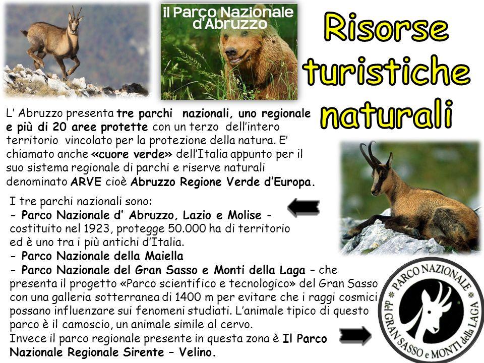 L' Abruzzo presenta tre parchi nazionali, uno regionale e più di 20 aree protette con un terzo dell'intero territorio vincolato per la protezione dell