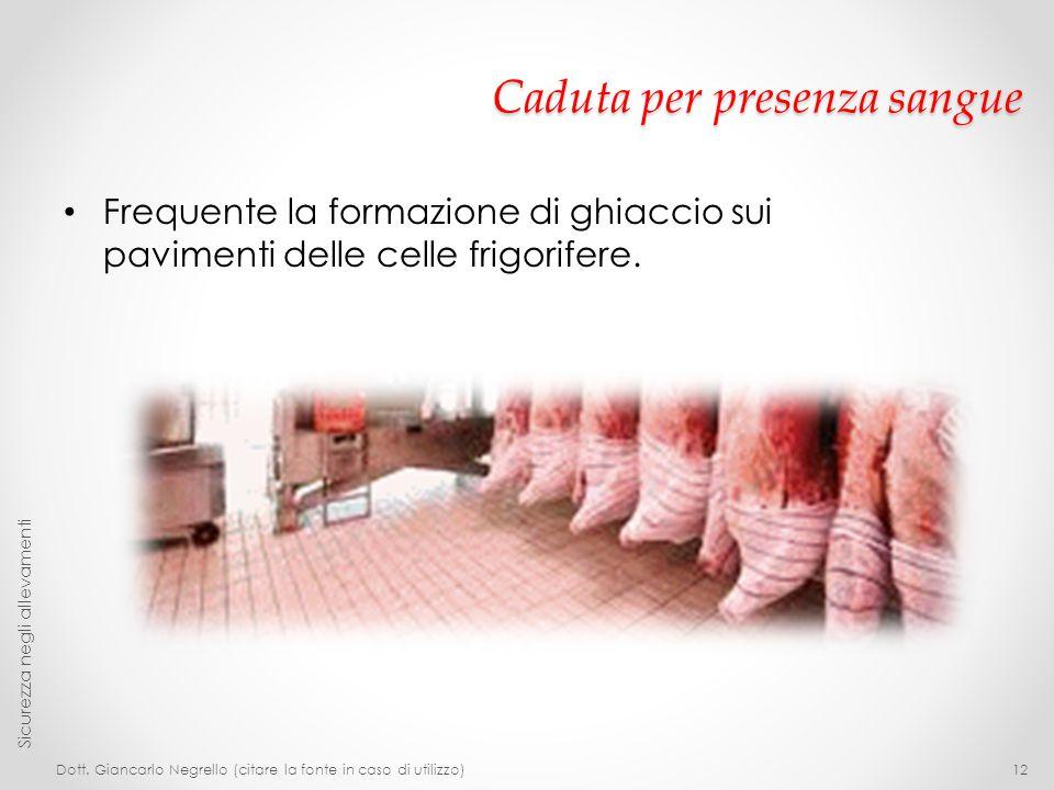 Caduta per presenza sangue Frequente la formazione di ghiaccio sui pavimenti delle celle frigorifere. Dott. Giancarlo Negrello (citare la fonte in cas