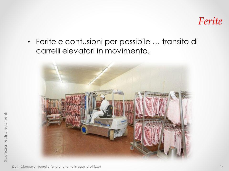 Ferite Ferite e contusioni per possibile … transito di carrelli elevatori in movimento. Dott. Giancarlo Negrello (citare la fonte in caso di utilizzo)