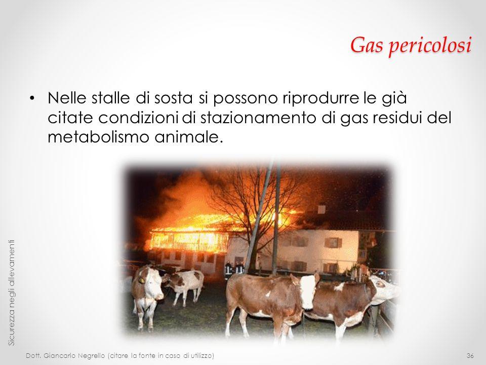 Gas pericolosi Nelle stalle di sosta si possono riprodurre le già citate condizioni di stazionamento di gas residui del metabolismo animale. Dott. Gia