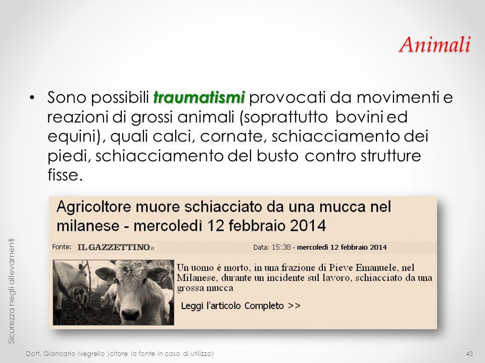 Animali traumatismi Sono possibili traumatismi provocati da movimenti e reazioni di grossi animali (soprattutto bovini ed equini), quali calci, cornat