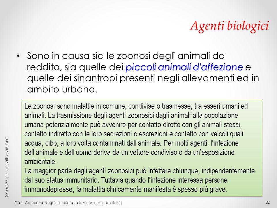 Agenti biologici piccoli animali d'affezione Sono in causa sia le zoonosi degli animali da reddito, sia quelle dei piccoli animali d'affezione e quell