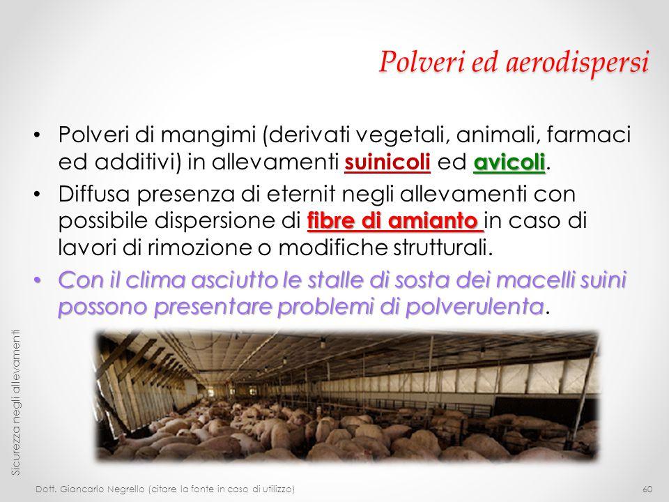 Polveri ed aerodispersi avicoli Polveri di mangimi (derivati vegetali, animali, farmaci ed additivi) in allevamenti suinicoli ed avicoli. fibre di ami