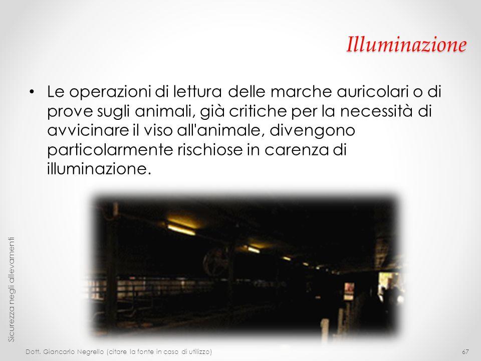 Illuminazione Le operazioni di lettura delle marche auricolari o di prove sugli animali, già critiche per la necessità di avvicinare il viso all'anima
