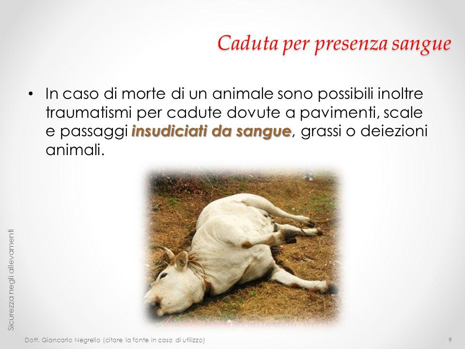 Caduta per presenza sangue insudiciati da sangue In caso di morte di un animale sono possibili inoltre traumatismi per cadute dovute a pavimenti, scal