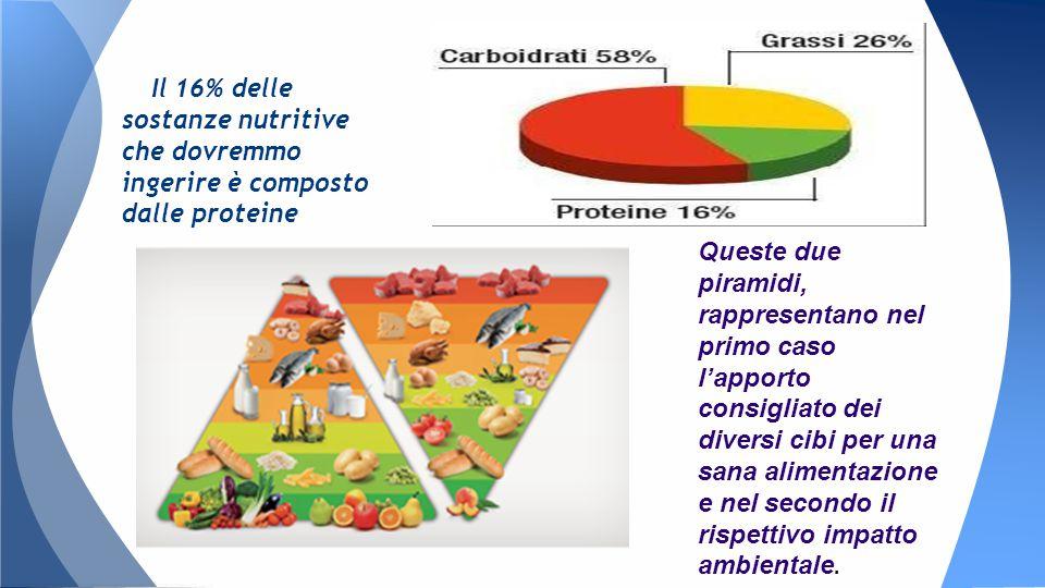 Il 16% delle sostanze nutritive che dovremmo ingerire è composto dalle proteine Queste due piramidi, rappresentano nel primo caso l'apporto consigliato dei diversi cibi per una sana alimentazione e nel secondo il rispettivo impatto ambientale.