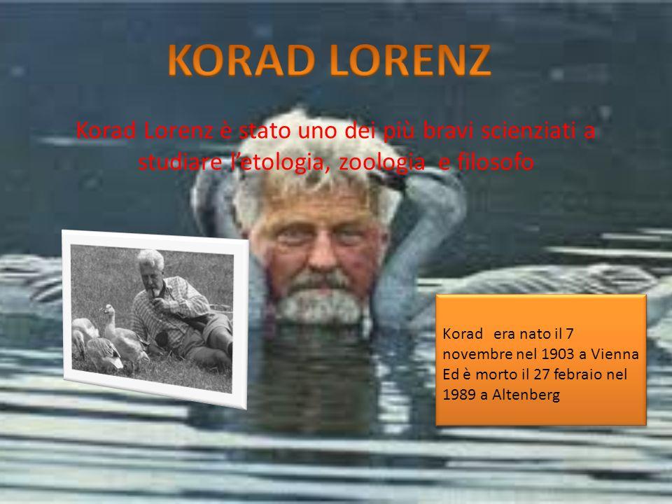Korad Lorenz è stato uno dei più bravi scienziati a studiare l'etologia, zoologia e filosofo Korad era nato il 7 novembre nel 1903 a Vienna Ed è morto il 27 febraio nel 1989 a Altenberg