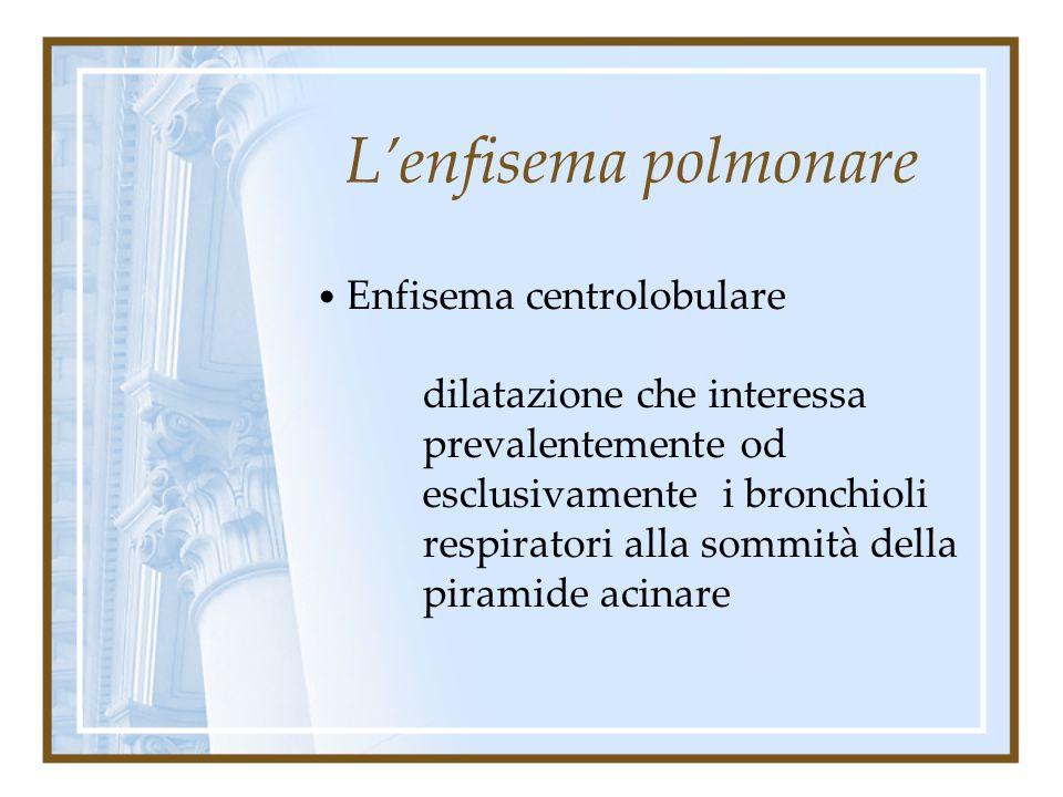 L'enfisema polmonare Enfisema panlobulare dilatazione alveolare estesa a tutto l'acino con o senza distruzione delle pareti dell'alveolo