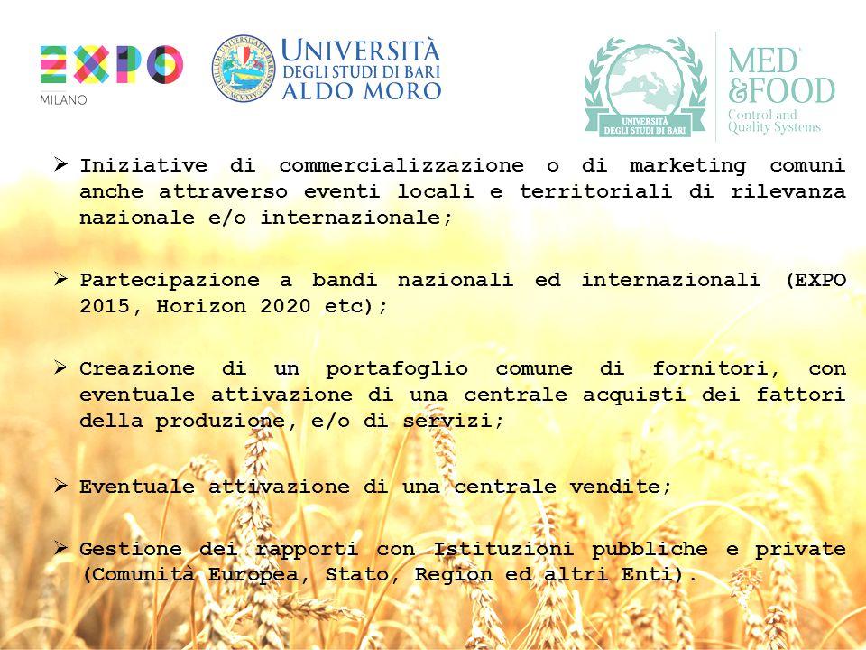  Iniziative di commercializzazione o di marketing comuni anche attraverso eventi locali e territoriali di rilevanza nazionale e/o internazionale;  P