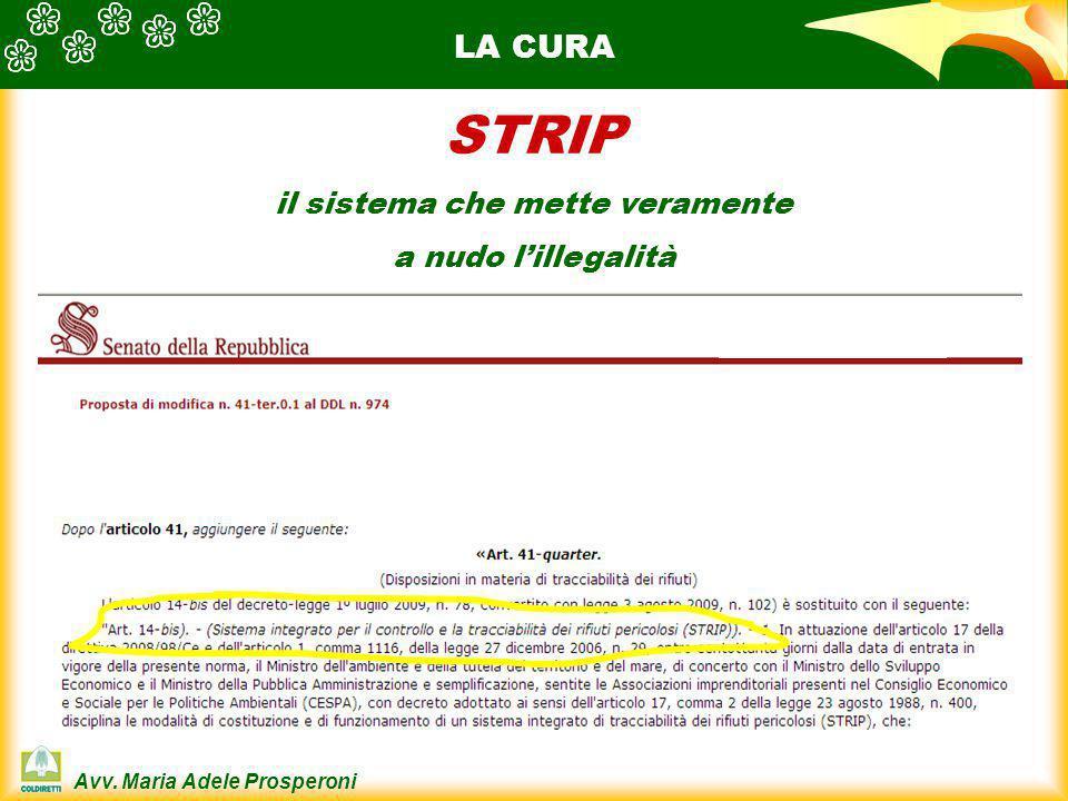 Avv. Maria Adele Prosperoni LA CURA STRIP il sistema che mette veramente a nudo l'illegalità