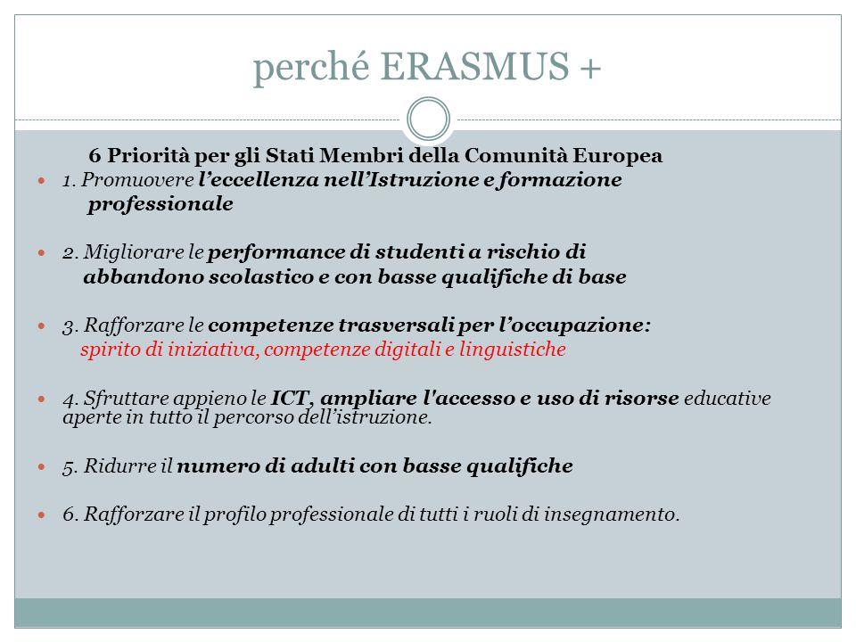 Valore aggiunto europeo Aiutare i cittadini ad acquisire maggiori e migliori abilità Accrescere la qualità dell'insegnamento nelle scuole dell'Unione Europea Promuovere la partecipazione dei giovani alla società e la costruzione di una dimensione europea