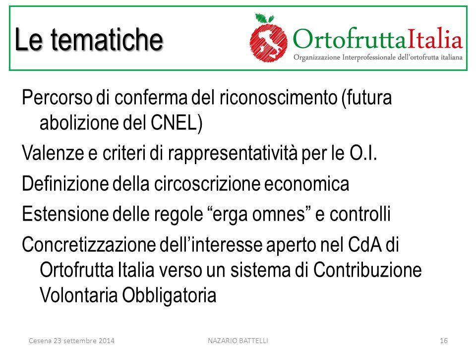 Le tematiche Percorso di conferma del riconoscimento (futura abolizione del CNEL) Valenze e criteri di rappresentatività per le O.I.