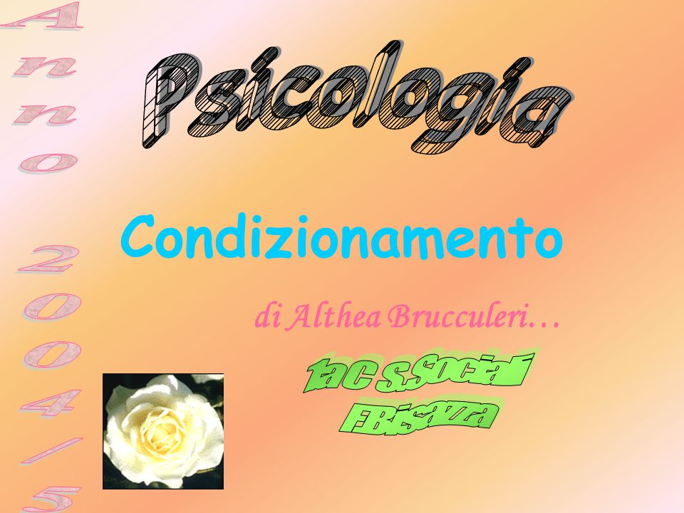 Condizionamento di Althea Brucculeri…