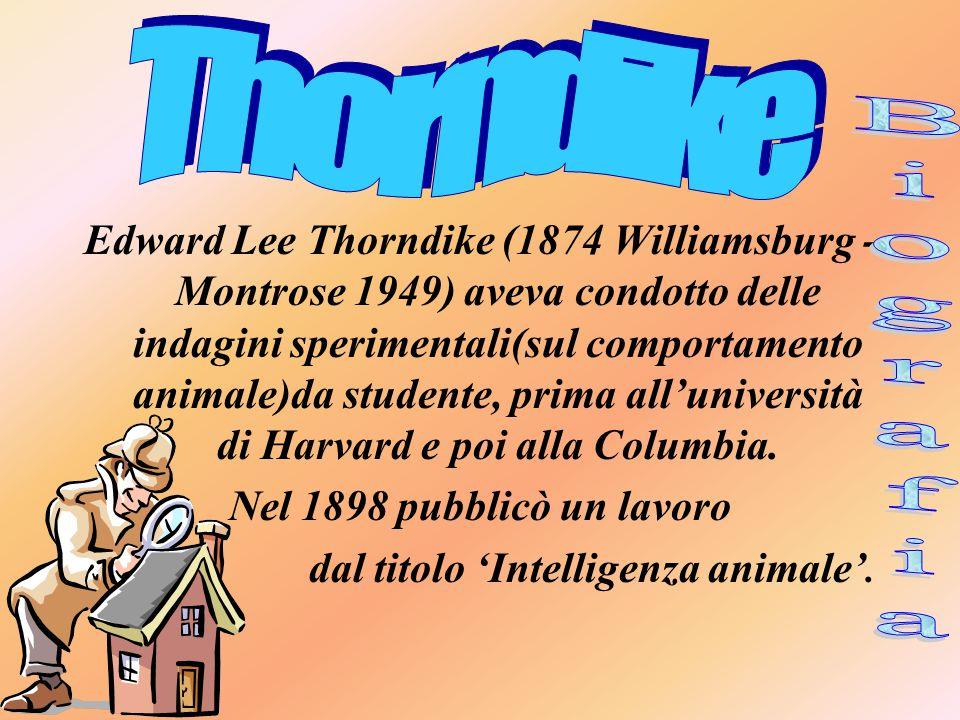 Edward Lee Thorndike (1874 Williamsburg - Montrose 1949) aveva condotto delle indagini sperimentali(sul comportamento animale)da studente, prima all'università di Harvard e poi alla Columbia.
