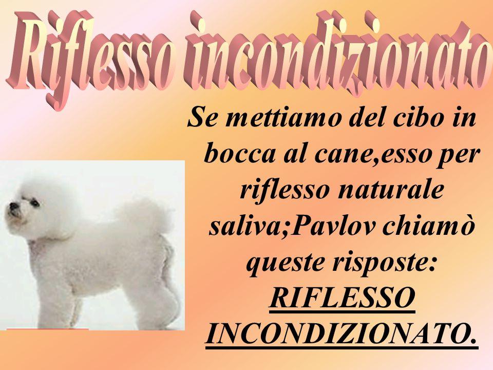 Se mettiamo del cibo in bocca al cane,esso per riflesso naturale saliva;Pavlov chiamò queste risposte: RIFLESSO INCONDIZIONATO.