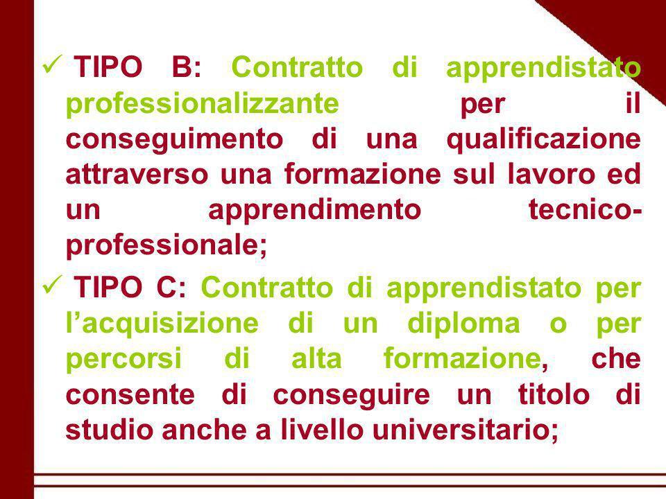 TIPO B: Contratto di apprendistato professionalizzante per il conseguimento di una qualificazione attraverso una formazione sul lavoro ed un apprendimento tecnico- professionale; TIPO C: Contratto di apprendistato per l'acquisizione di un diploma o per percorsi di alta formazione, che consente di conseguire un titolo di studio anche a livello universitario;