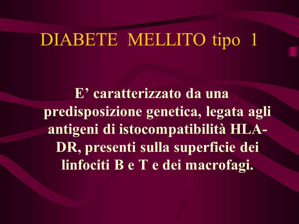DIABETE MELLITO tipo 1 E' caratterizzato da una predisposizione genetica, legata agli antigeni di istocompatibilità HLA- DR, presenti sulla superficie