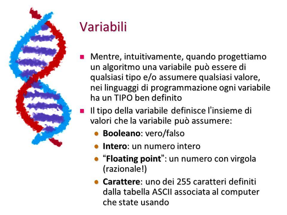 Variabili Mentre, intuitivamente, quando progettiamo un algoritmo una variabile può essere di qualsiasi tipo e/o assumere qualsiasi valore, nei linguaggi di programmazione ogni variabile ha un TIPO ben definito Mentre, intuitivamente, quando progettiamo un algoritmo una variabile può essere di qualsiasi tipo e/o assumere qualsiasi valore, nei linguaggi di programmazione ogni variabile ha un TIPO ben definito Il tipo della variabile definisce l ' insieme di valori che la variabile può assumere: Il tipo della variabile definisce l ' insieme di valori che la variabile può assumere: Booleano: vero/falso Booleano: vero/falso Intero: un numero intero Intero: un numero intero Floating point : un numero con virgola (razionale!) Floating point : un numero con virgola (razionale!) Carattere: uno dei 255 caratteri definiti dalla tabella ASCII associata al computer che state usando Carattere: uno dei 255 caratteri definiti dalla tabella ASCII associata al computer che state usando