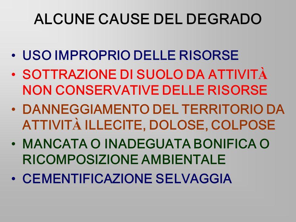 ALCUNE CAUSE DEL DEGRADO USO IMPROPRIO DELLE RISORSE SOTTRAZIONE DI SUOLO DA ATTIVIT À NON CONSERVATIVE DELLE RISORSE DANNEGGIAMENTO DEL TERRITORIO DA ATTIVIT À ILLECITE, DOLOSE, COLPOSE MANCATA O INADEGUATA BONIFICA O RICOMPOSIZIONE AMBIENTALE CEMENTIFICAZIONE SELVAGGIA
